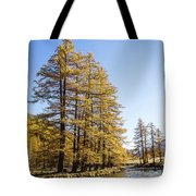 Claree Valley In Autumn - 1 - French Alps Tote Bag