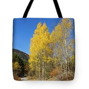 Claree Valley In Autumn - 11 - French Alps Tote Bag