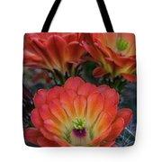 Claret Cup Cactus Flowers  Tote Bag