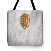 Clash Of Seasons Tote Bag