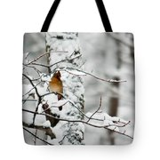 Classic Cardinal In Snow Tote Bag