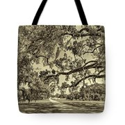 Classic Southern Beauty - Evergreen Plantation -sepia Tote Bag