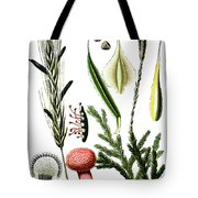 Claviceps Purpures. Recht Wolf's-foot Clubmoss, Stag's- Tote Bag