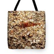 Cleaner Shrimp On Shell Covered Bottom Tote Bag
