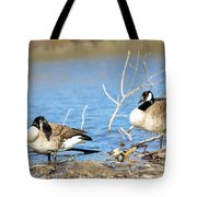 Cleaning On Debris Tote Bag by Steven Santamour