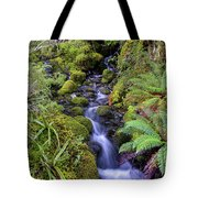 Cleansing The Soul Tote Bag