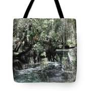 Clear Lithia Springs Tote Bag