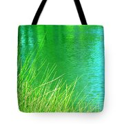 Clear Sighted Tote Bag