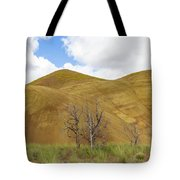 Clear Sky At Painted Hills Tote Bag