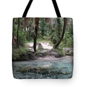 Clear Water And Palms Tote Bag