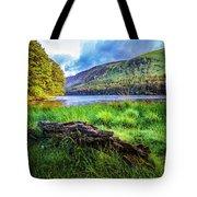 Clear Waters Of Glendalough Tote Bag