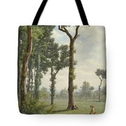 Clearance In An Oak Forest Tote Bag