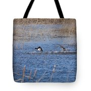 Cleared For Takeoff-ring-necked Ducks  Tote Bag