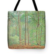 Clearing  Tote Bag