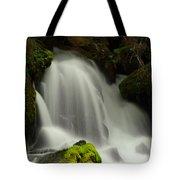 Clearwater Falls 1 Tote Bag