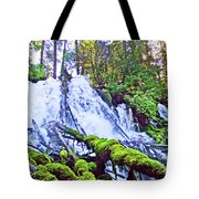 Clearwater Falls, Highway 138, Umpqua National Forest, Oregon Tote Bag