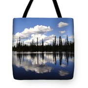 Clearwater Reflections Tote Bag