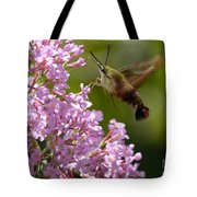 Clearwing Pink Tote Bag