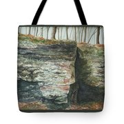 Cleft.  Rock Shelf Fissure And Autumn Leaves Tote Bag