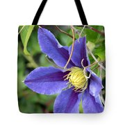 Clematis Blossom Tote Bag