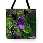 Clematis Flower Blossoms Tote Bag