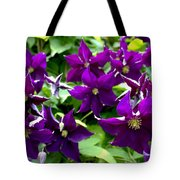 Clematis Flowers Tote Bag by Corey Ford