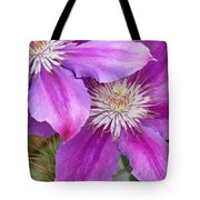 Clematis Flowers Tote Bag