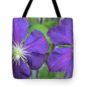 Clematis Friends Tote Bag
