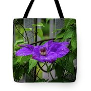 Clematis In Purple Tote Bag