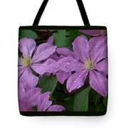 Clematis In The Rain Tote Bag