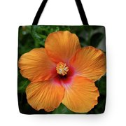 Clementine Hibiscus Tote Bag