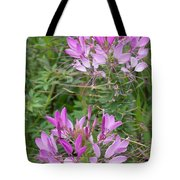Cleome Sparkler Lavender Tote Bag