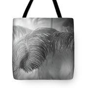Cleopatra's Dream Tote Bag