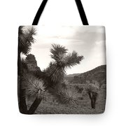 Cliff Between Joshua Tote Bag