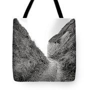 Cliff Cleavage Tote Bag