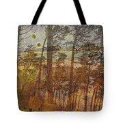 Cliff Dwellers Tote Bag