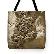 Cliff Swallow Hirundo Pyrrhonota Nests Tote Bag