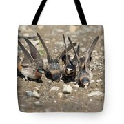 Cliff Swallows Gather Mud Tote Bag