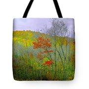 Climb Into Autumn Tote Bag