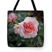 Climber Romantica Tea Rose, Digital Art Tote Bag