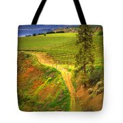 Climbing In Colour Tote Bag