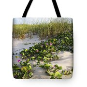 Climbing The Dunes Tote Bag