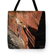 Climbing The Great Arch Tote Bag