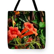 Climbing To The Sun Tote Bag