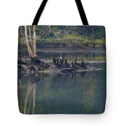 Clinch River Beauty Tote Bag