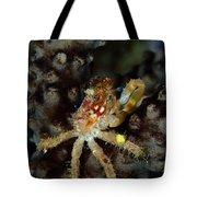 Clinging Crab On Sea Rod Tote Bag