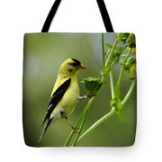 Clinging Goldfinch Tote Bag