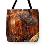 Clinging To Life Tote Bag