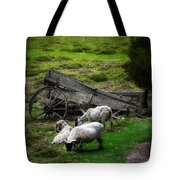 Clint's Sheep  Tote Bag