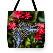 Clipper Butterfly 1 Tote Bag